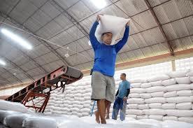 distribuição de milho aos criadores no Piauí