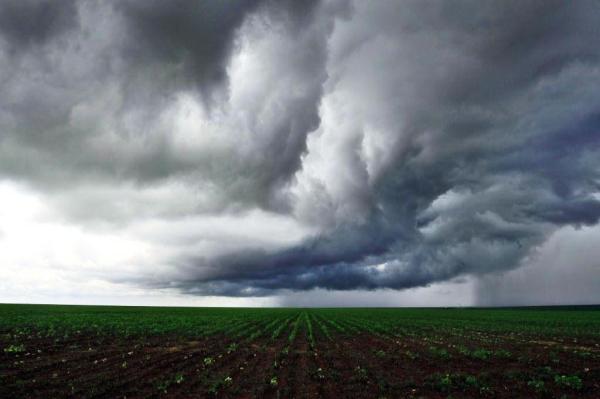 chuva-na-lavoura