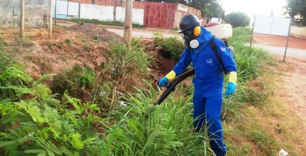 Servidor da Saúde utilizando o fumacê para combater os mosquitos adultos