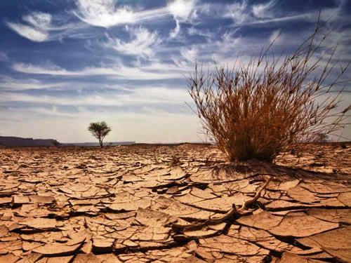 seca no nordeste