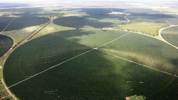 Áreas irrigadas em Luís Eduardo Magalhães.