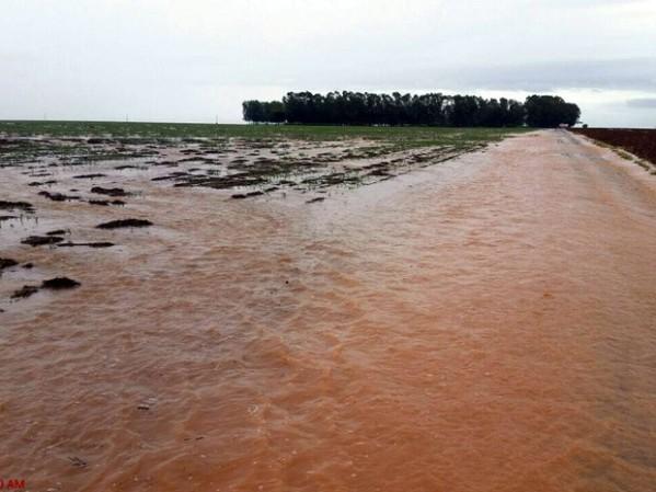 Chuva em Campo Novo dos Parecis - MT, prejudicando a safra e o plantio da safrinha.
